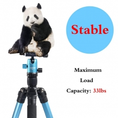 ZOMEi M3 Blue Compact Ball Head Tripod Kit 62.5 Inch for Wedding and Party Photography with Monopod Conversion