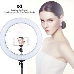 ZOMEi 14-inch LED Ring Light YouTube Videos Photography with Light Stand 3200-5500K